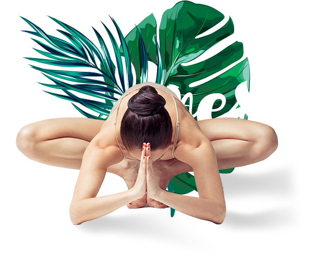 Wellness Crouching woman in front of leaf: Yoga Classes Watford
